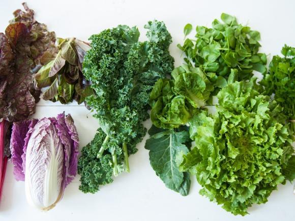 Viele verschiedene Blattgrünzutaten, u.a Grünkohl, Feldsalat, Endivien